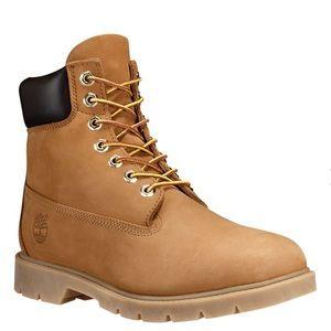 Men's 6-Inch Basic Waterproof Boots Butters